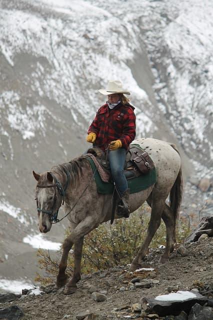 cowgirl-1188214_640.jpg